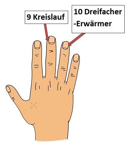 Hand 4 Teil