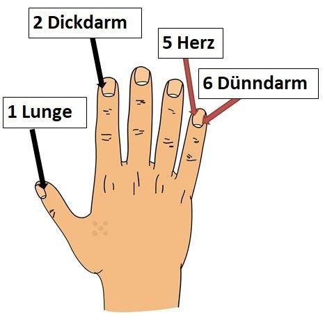 Hand Teil 1